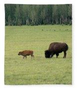 Arizona Bison Fleece Blanket
