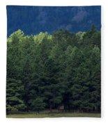 Arizona Forest Fleece Blanket