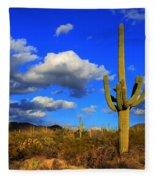 Arizona Landscape 2 Fleece Blanket