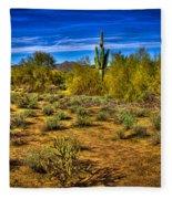 Arizona Landscape Iv Fleece Blanket