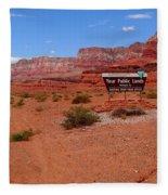 Arizona Road Trip Fleece Blanket