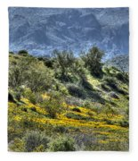 Arizona Spring Fleece Blanket