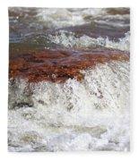 Arizona Water Fleece Blanket