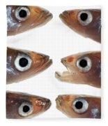 Arrangement Of Small Fish Smelt Fleece Blanket