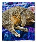 Cat Nap Fleece Blanket