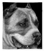 Art In The News 55- Kingston Fleece Blanket