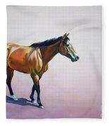 Art  Fleece Blanket