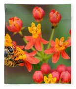Asclepias Curassavica And Bee Fleece Blanket