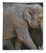 Asian Elephant Fleece Blanket