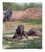 Asian Elephants - In Support Of Boon Lott's Elephant Sanctuary Fleece Blanket
