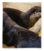 Asian Otters Fleece Blanket