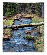 Aspen Crossing Mountain Stream Fleece Blanket