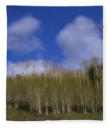 Aspen Dream Fleece Blanket