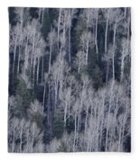 Aspen Fleece Blanket