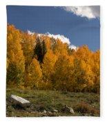 Aspen On The Road To Telluride Dsc07397 Fleece Blanket