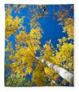 Aspen Sky Fleece Blanket