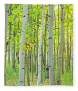Aspen Tree Forest Autumn Time  Fleece Blanket