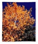 Aspen Tree Fleece Blanket