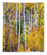 Aspen Tree Magic Fleece Blanket