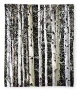 Aspen Tree Trunks Fleece Blanket