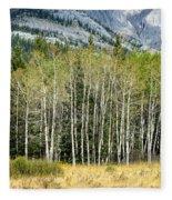 Aspen Trees Along The Bow Valley Fleece Blanket