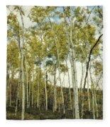 Aspen Trees In Spring  Fleece Blanket