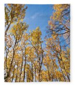 Aspen Trees In The Fall Fleece Blanket