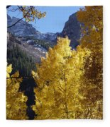 Aspen Window Fleece Blanket