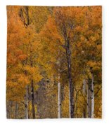 Aspens Ablaze Fleece Blanket