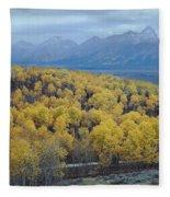 Aspens And The Tetons Fleece Blanket