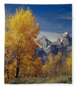 1m9353-aspens In Autumn And The Teton Range - V Fleece Blanket