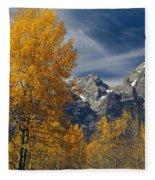 1m9352-aspens In Autumn And The Teton Range Fleece Blanket