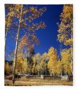 Aspens In Fall - V Fleece Blanket