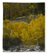 Aspens In Snow Fleece Blanket