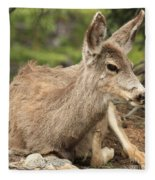 At Rest In The Rockies Fleece Blanket