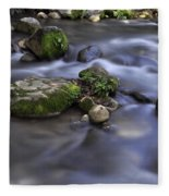 At The Banias River 1 Fleece Blanket