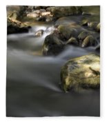 At The Banias River 2 Fleece Blanket