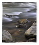 At The Banias River 3 Fleece Blanket