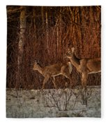 At The Edge Of The Woods Fleece Blanket