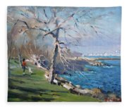 At The Park By Lake Ontario Fleece Blanket