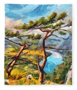 At The Top Of The Mountain Fleece Blanket