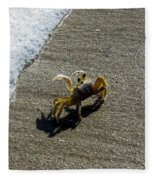 Atlantic Ghost Crab Fleece Blanket