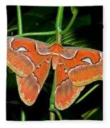 Atlas Moth Fleece Blanket