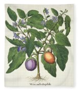 Aubergine Melanzana Fructu Pallido Fleece Blanket
