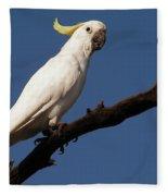 Australian Bird Fleece Blanket