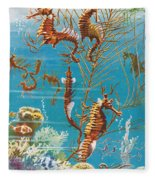 Australian Seahorses Fleece Blanket