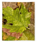 autumm is coming 3 - A carpet of autumn color leaves Fleece Blanket