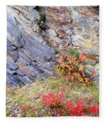 Autumn And Rocks Fleece Blanket