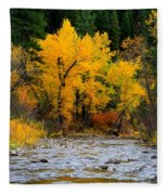 Autumn Beauty In Boise County Fleece Blanket