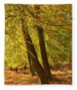 Autumn Beeches Fleece Blanket
